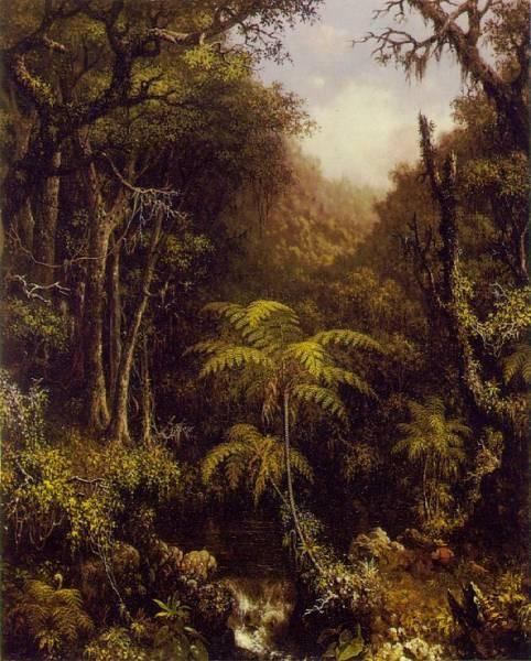 Brazilian Forest ATC
